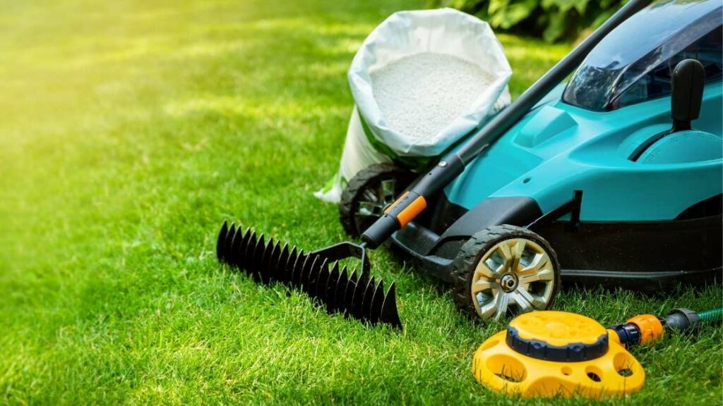 Lawn Fertilizer and Equipment