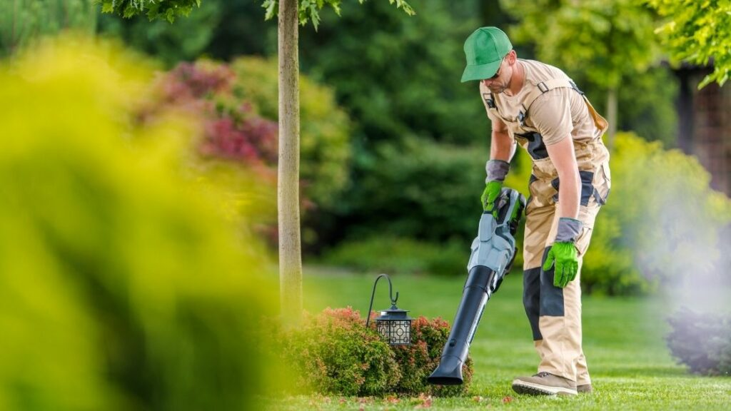 How Much Will a Lawn Care Service Cost